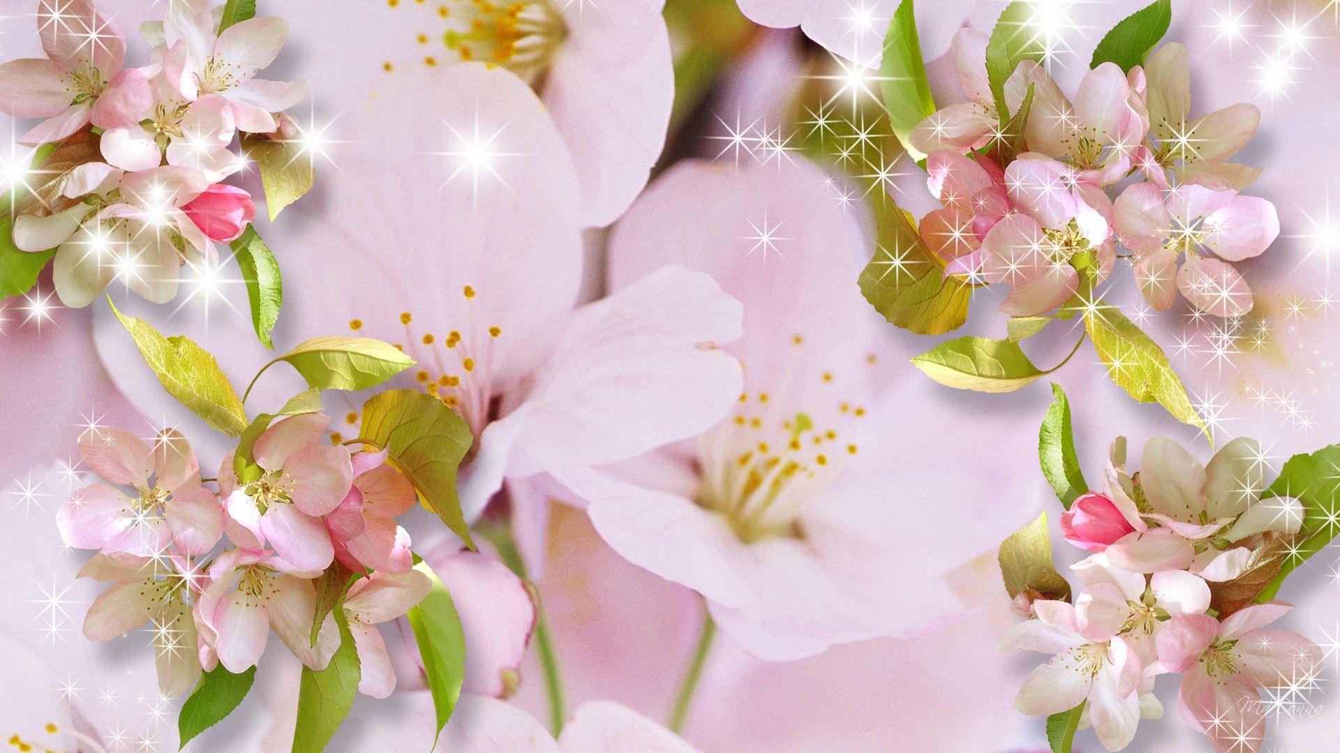 Hd Essence Of Sakura Wallpaper, Spring, Firefox Persona, - Bunga Sakura Khas Jepang , HD Wallpaper & Backgrounds