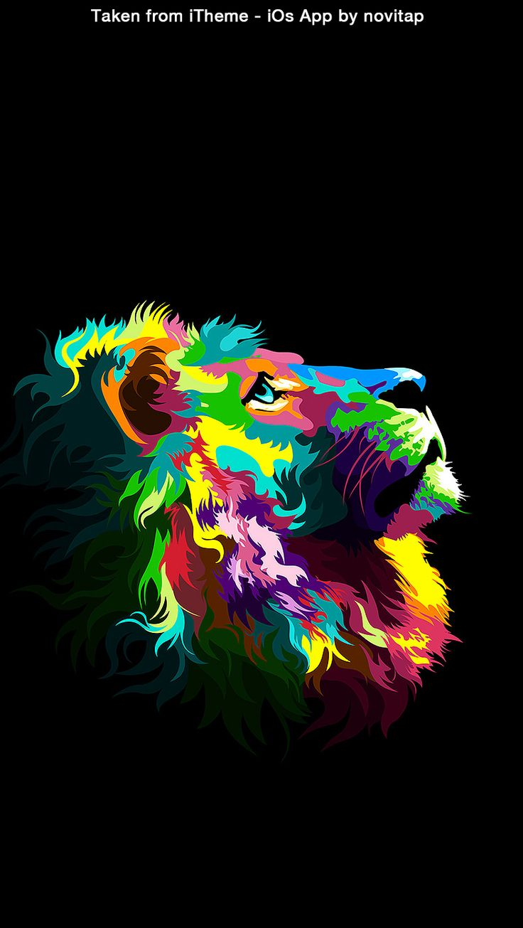 Lion Colour Wallpaper Iphone , HD Wallpaper & Backgrounds