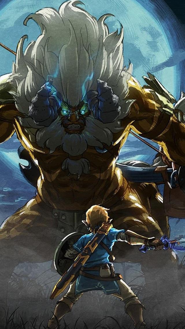 Artwork The Legend Of Zelda - Legend Of Zelda Breath Of The Wild Dlc Art , HD Wallpaper & Backgrounds