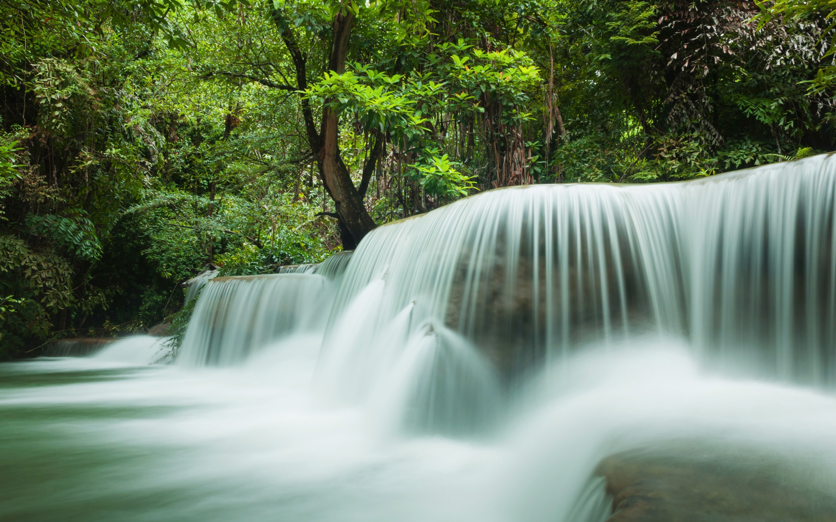 Waterfall River Tropical Forest Thailand Jungle