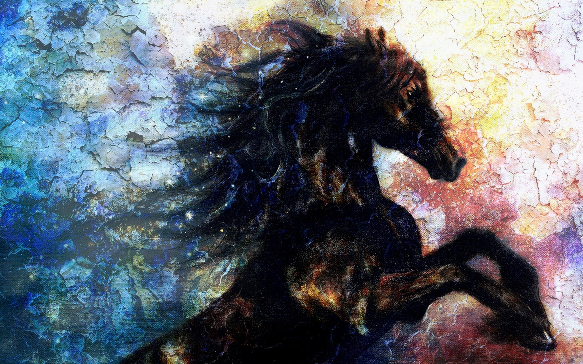 Pretty Black Horse Wall Art Wallpapers And Stock Photos - Painting On Canvas Of A Black Unicorn Dancing In Space , HD Wallpaper & Backgrounds