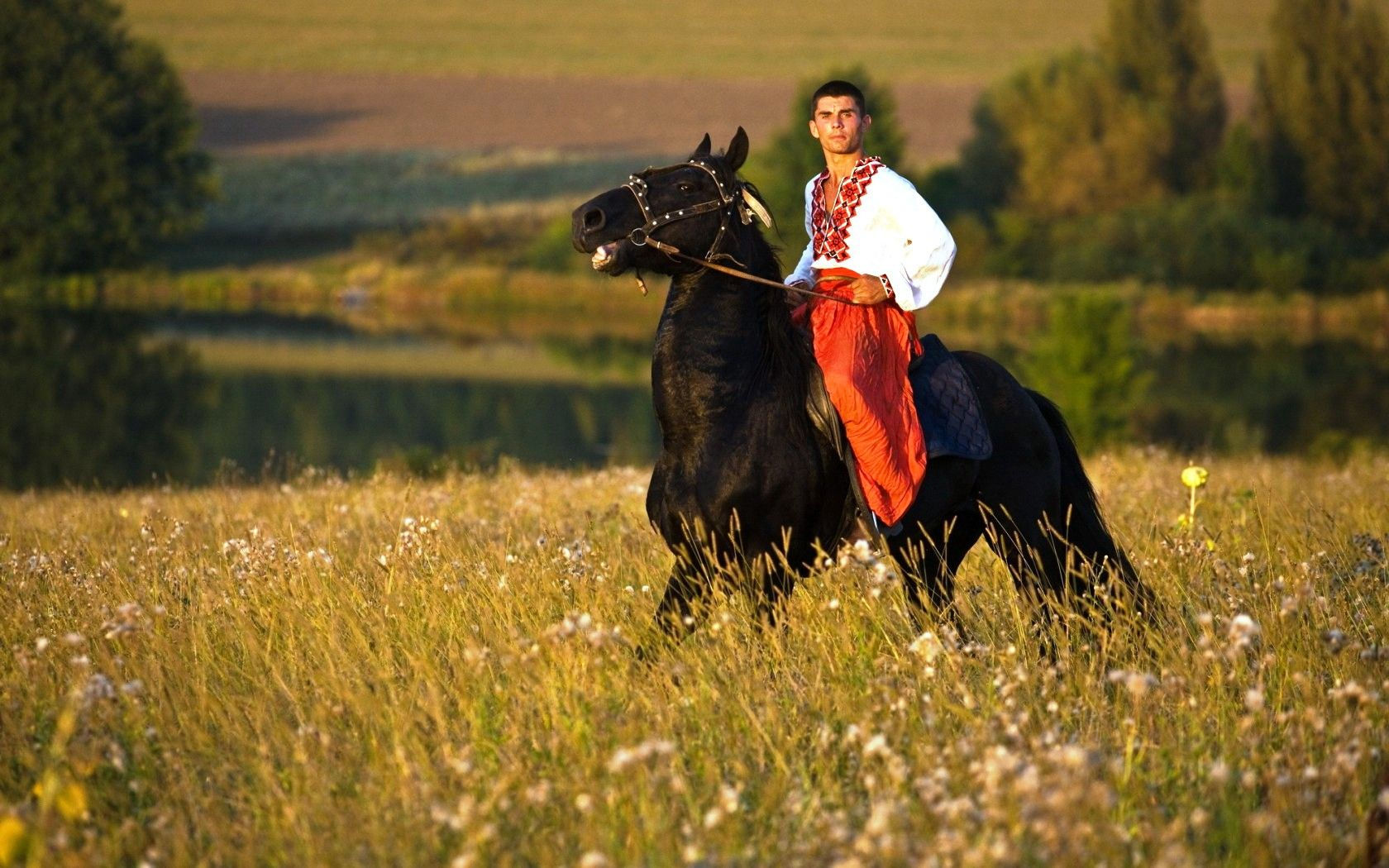 Black Stallion Man Horse Riding Horses Wallpaper Background 2107066 Hd Wallpaper Backgrounds Download