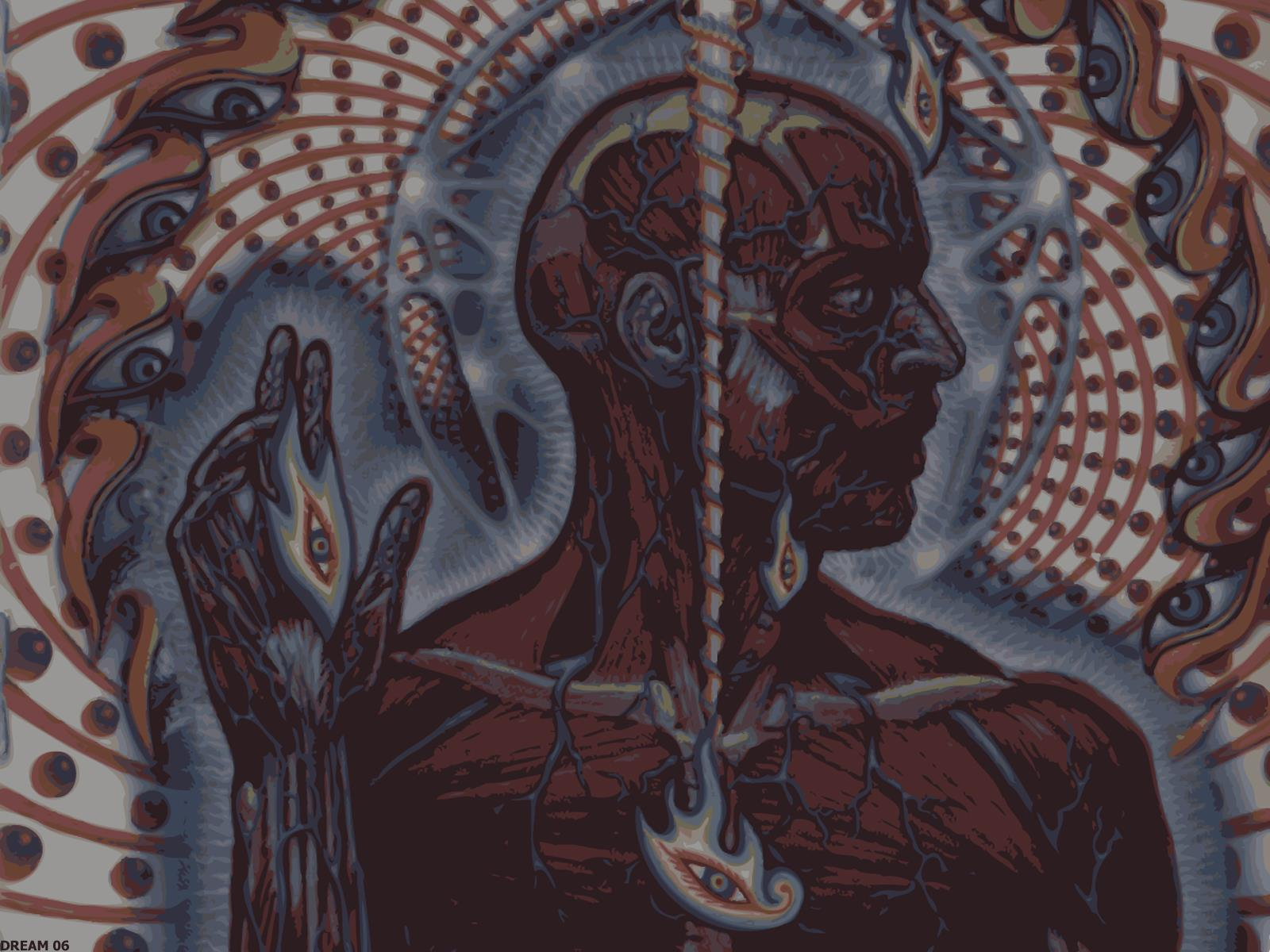 Alex Grey Wallpapers Group Tool Lateralus 2125166 Hd Wallpaper Backgrounds Download
