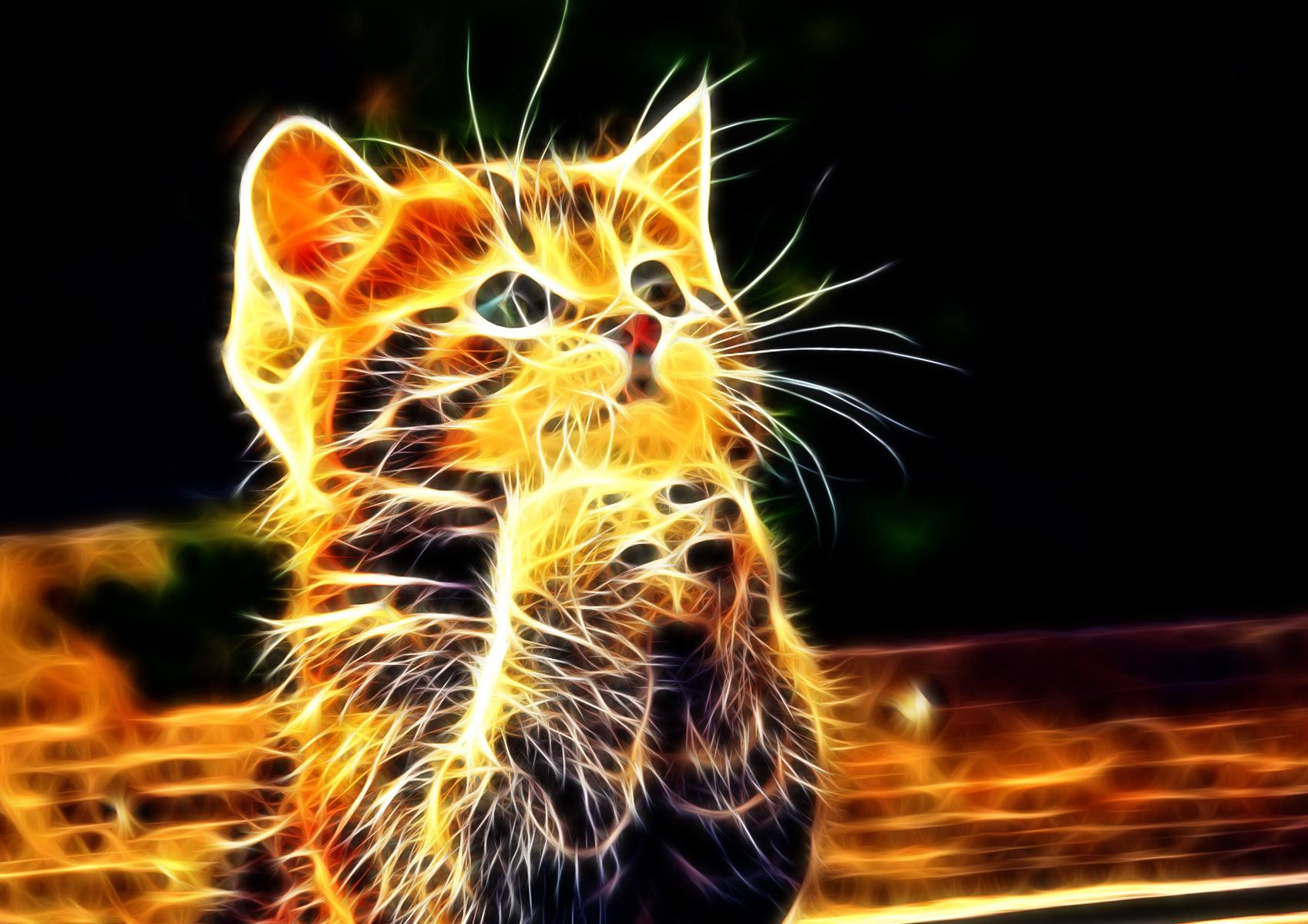 22725 Animals 3d Wallpapers For Desktop Cool Backgrounds Of Animals 2133342 Hd Wallpaper Backgrounds Download