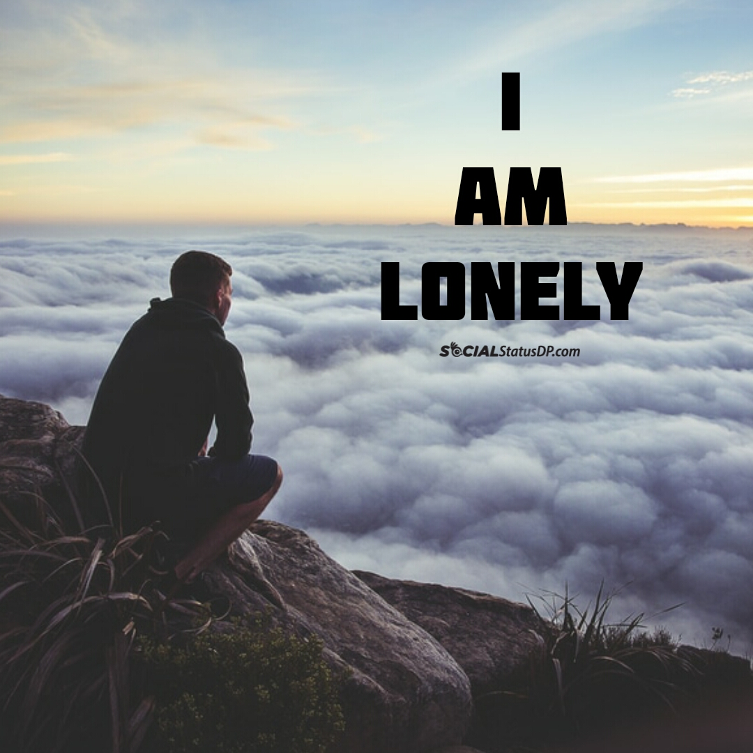 best whatsapp lonely status alone quotes loneliness lonely dp