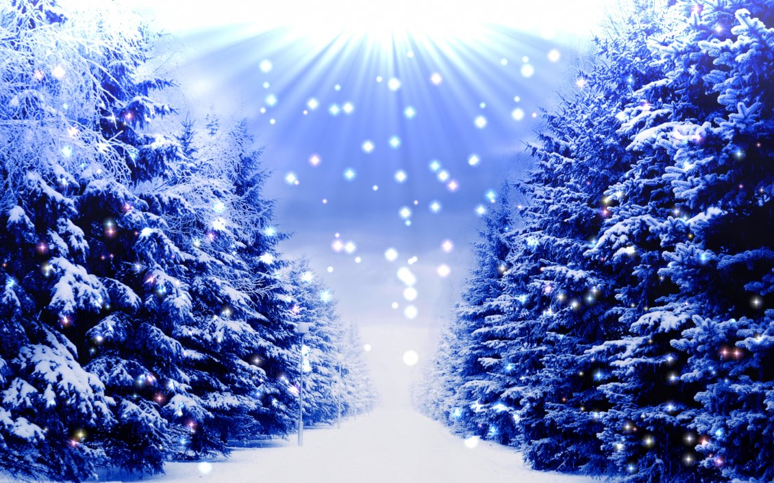 215 2159901 download wallpaper blue christmas trees full with white