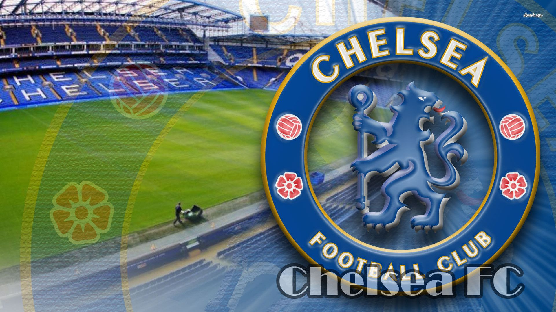 Chelsea Fc Wallpaper 2015 Download Gambar Chelsea Logo 2166813