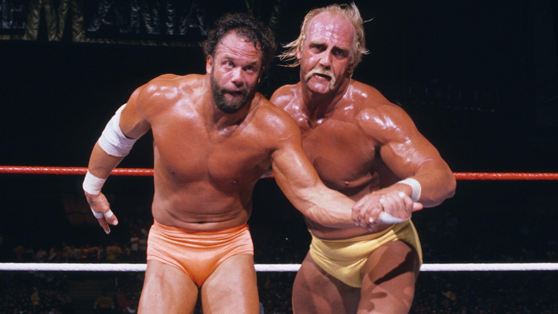 Hulk Hogan Vs Spider Man 1 Randy Savage 2170804 Hd