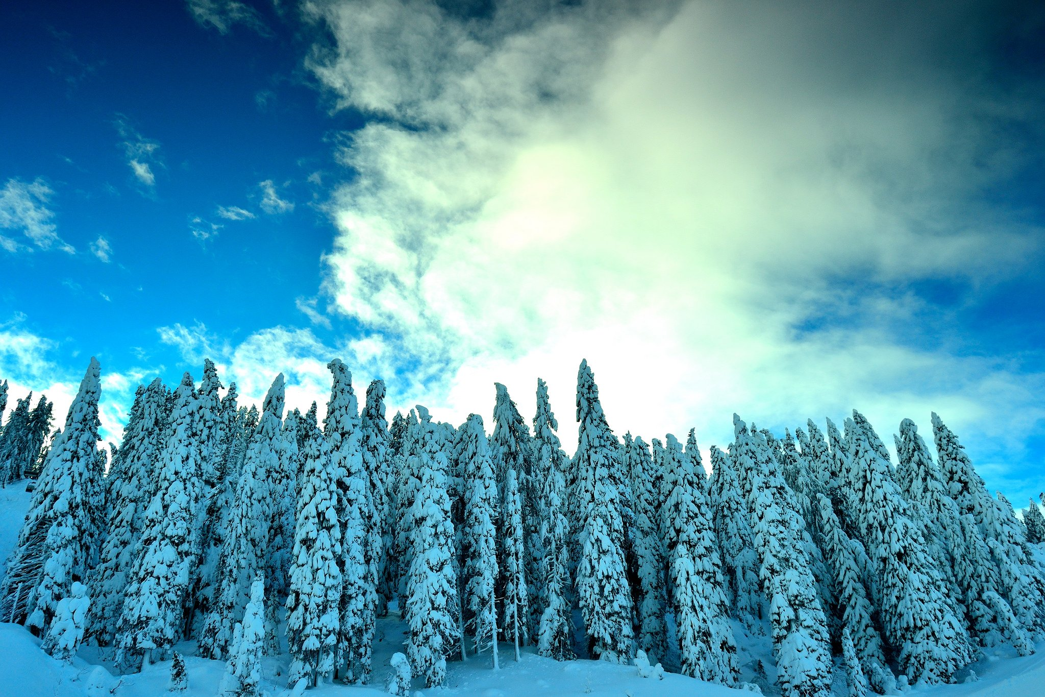 Frozen Wallpapers Samsung High Resolutioncool Images Snow