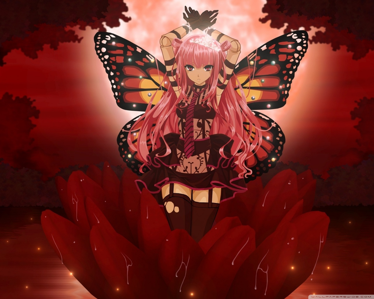 Standard 5 - - Red Hair Anime Fairy , HD Wallpaper & Backgrounds