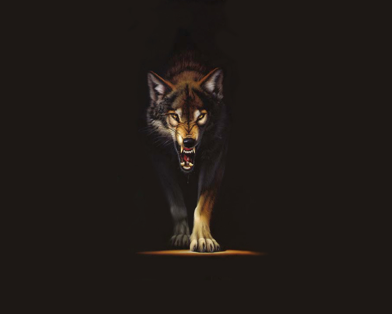 Cool Wolf Backgrounds Iphone 224172 Hd Wallpaper