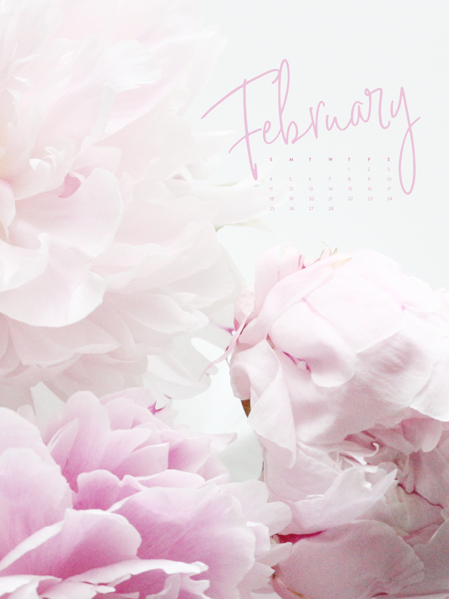 Pretty Wallpapers - Calendar For Background Feb 2019 , HD Wallpaper & Backgrounds