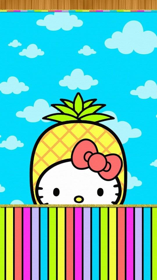Cute Hello Kitty Walls Found On Pinterest 2202328 Hd