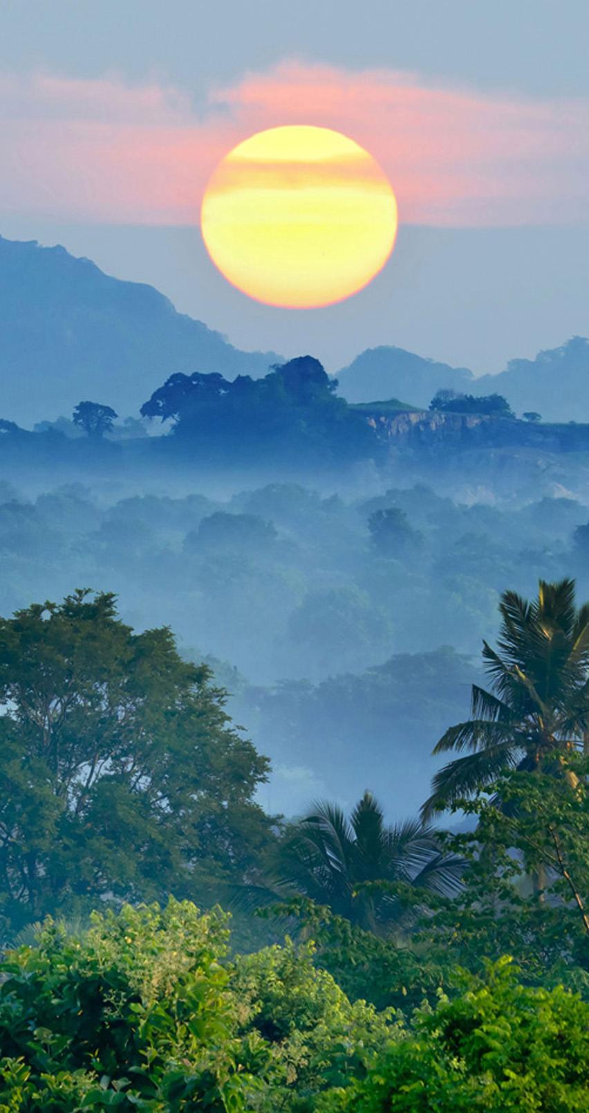 Iphone Natuur Achtergrond Nature In Sri Lanka 2219125