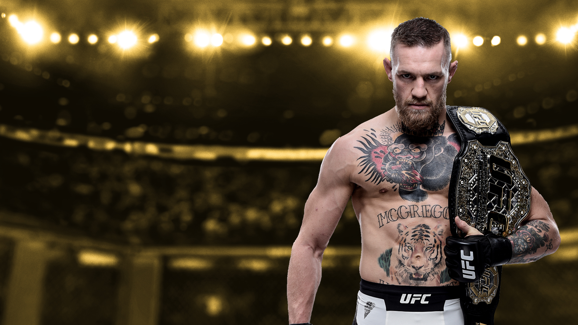 Ufc Store 2229745 Hd Wallpaper Backgrounds Download