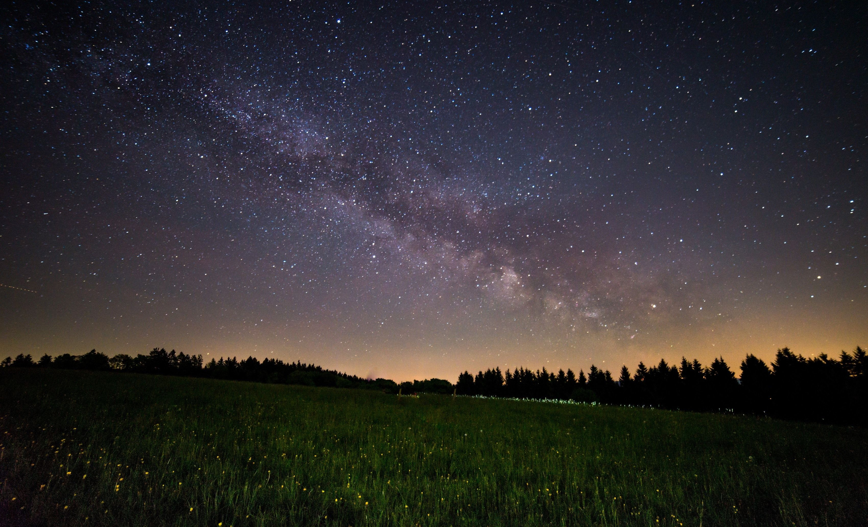 Night Sky And Field , HD Wallpaper & Backgrounds