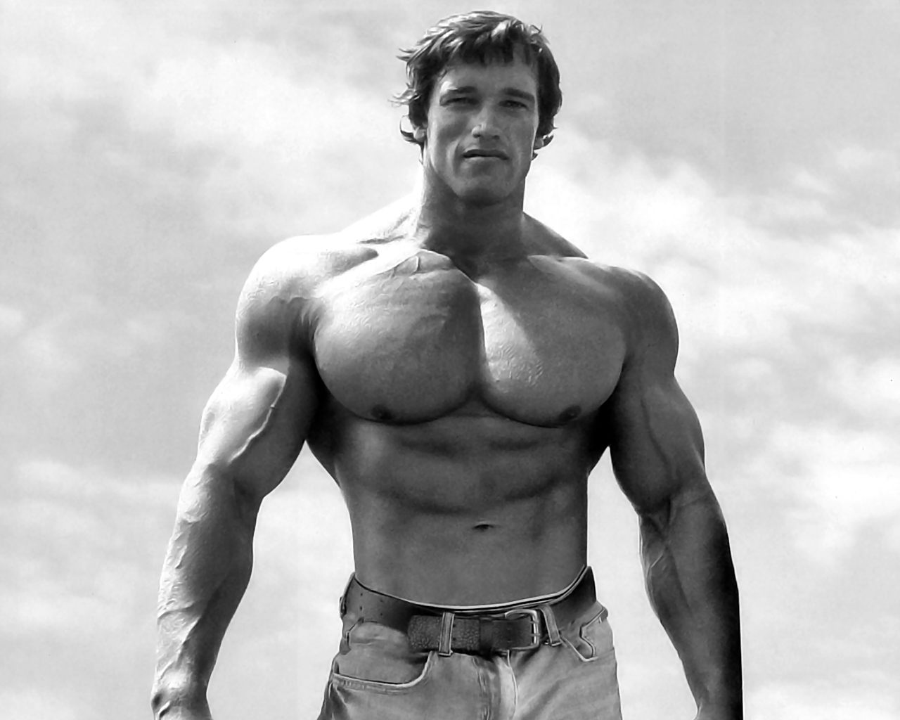 Arnold Schwarzenegger Bodybuilding Wallpapers Hd 2243252