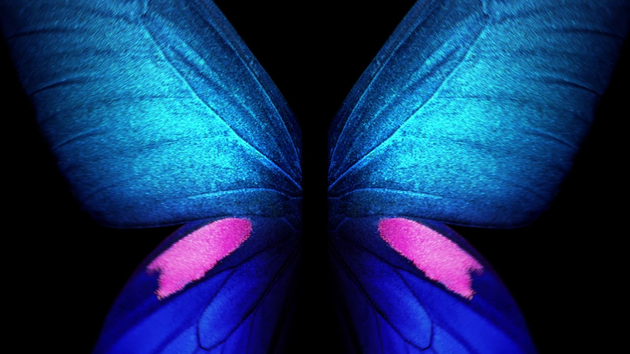Samsung Butterfly , HD Wallpaper & Backgrounds