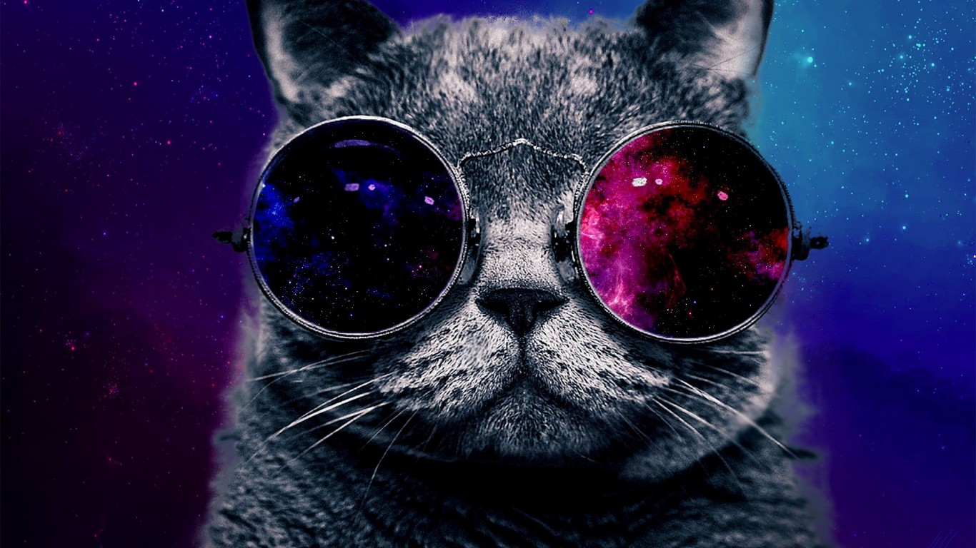 Space Cat 2271731 Hd Wallpaper Backgrounds Download