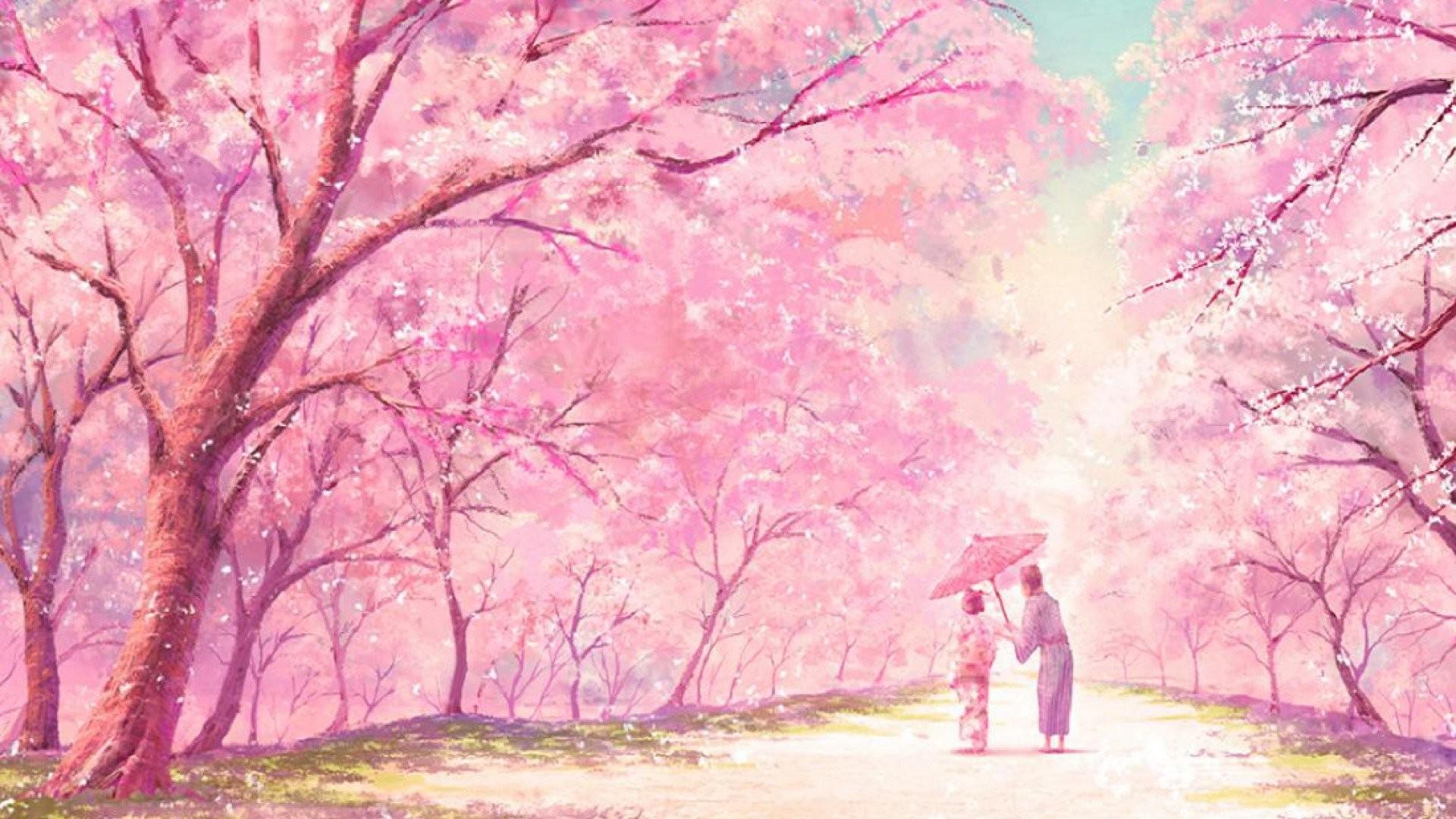 Japanese Cherry Blossom Anime 2296800 Hd Wallpaper