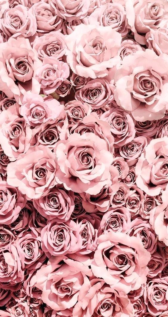 Rose Gold Aesthetic Wallpapers For Iphone , HD Wallpaper & Backgrounds