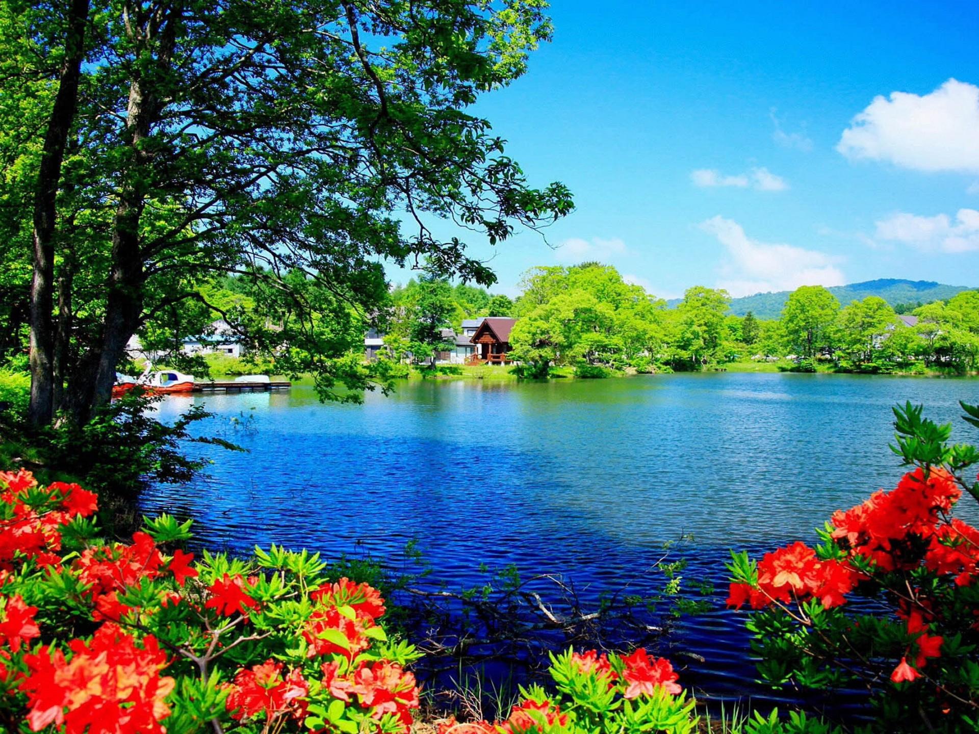 Beautiful Nature , HD Wallpaper & Backgrounds