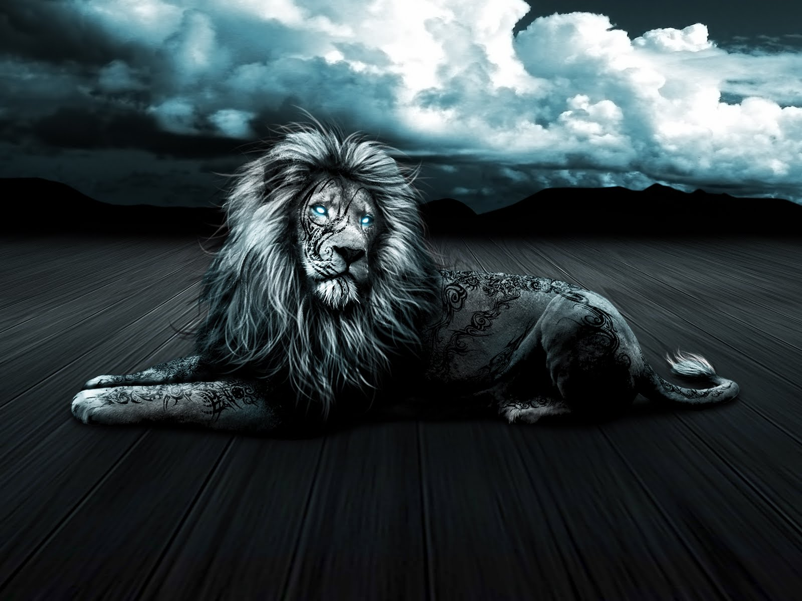 Wallpaper Lion Images With Black Background