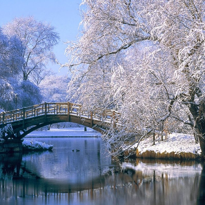 10 Most Popular Winter Scenery Free Wallpaper Full Winter