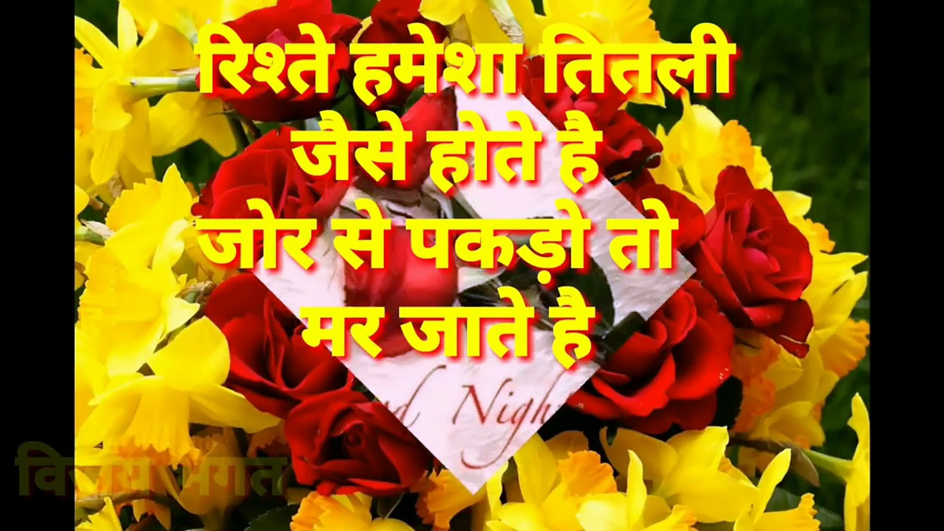 शूभ रात्री Good Night Wishes Whatsapp Video Message - Red And Yellow Roses Background , HD Wallpaper & Backgrounds