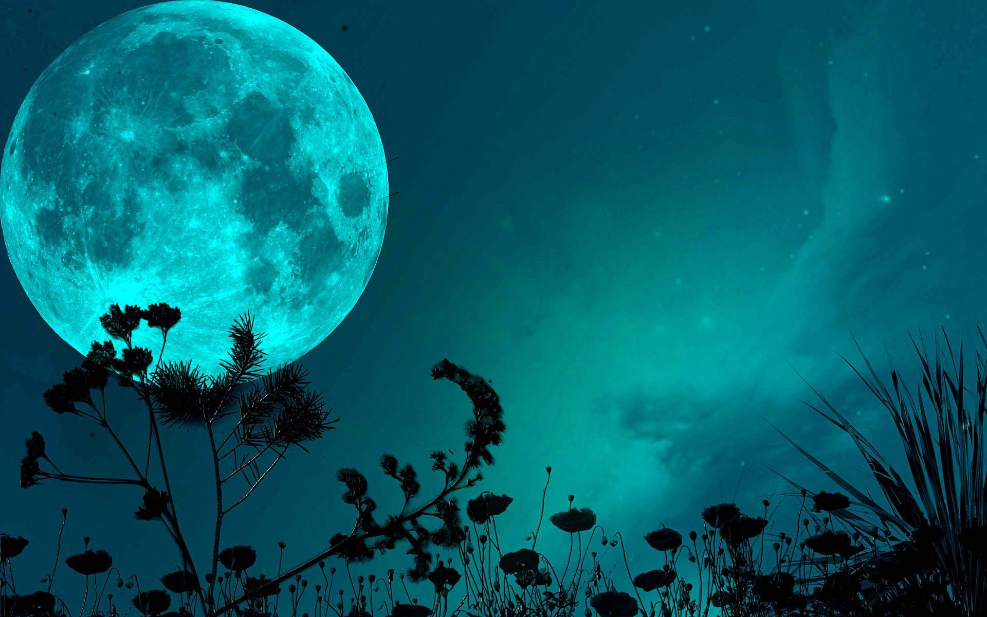 Blue Moon Wallpaper 4k 2304024 Hd Wallpaper Backgrounds Download