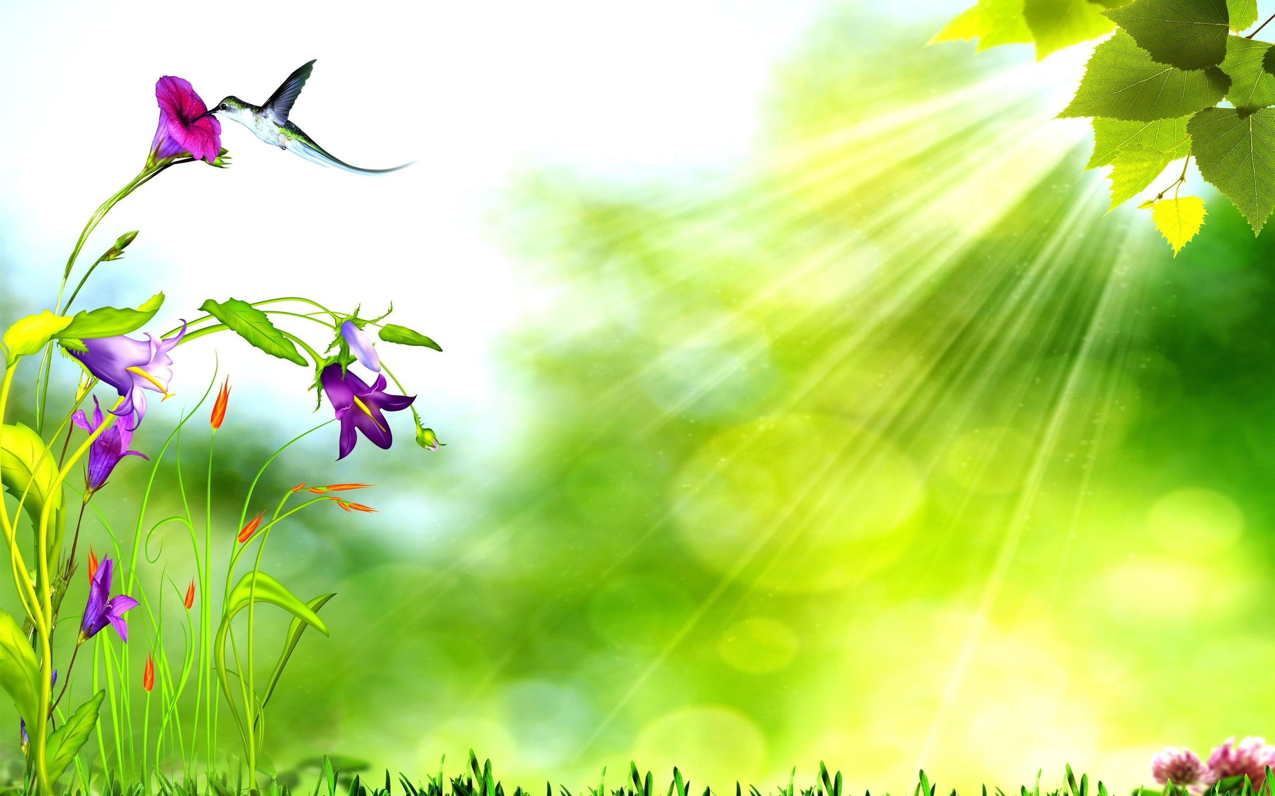 New Nature Background Design , HD Wallpaper & Backgrounds