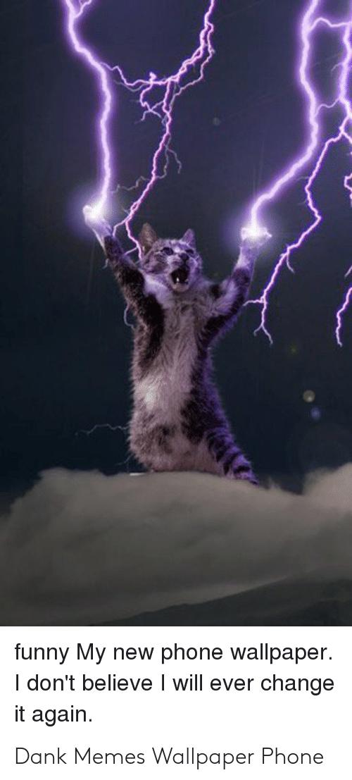 Power Cat Meme , HD Wallpaper & Backgrounds