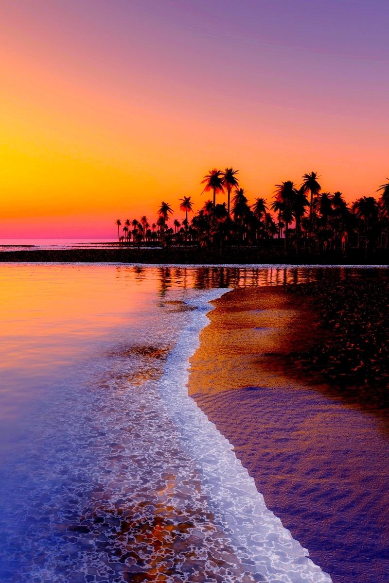 Wallpaper Beach, Tropics, Sea, Sand, Palm Trees, Sunset - Sunset Beach Wallpaper Iphone , HD Wallpaper & Backgrounds