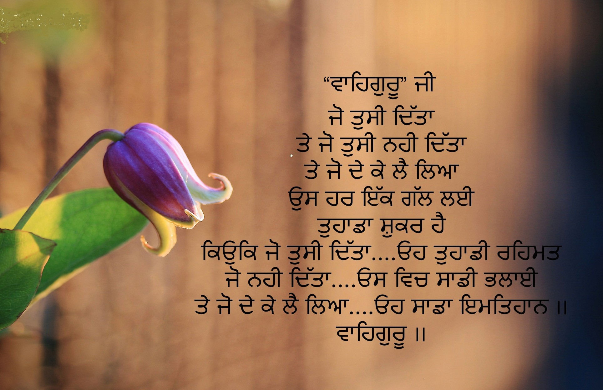 Punjabi Whatsapp Dp Images Source Whatsapp Attitude Status