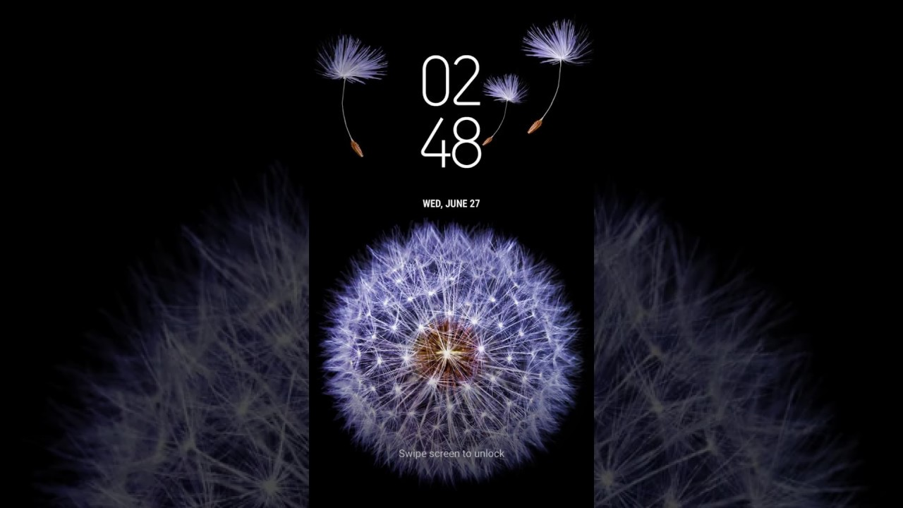 Samsung Themes Animated Wallpaper Galaxy Dandelion Dandelion 247833 Hd Wallpaper Backgrounds Download