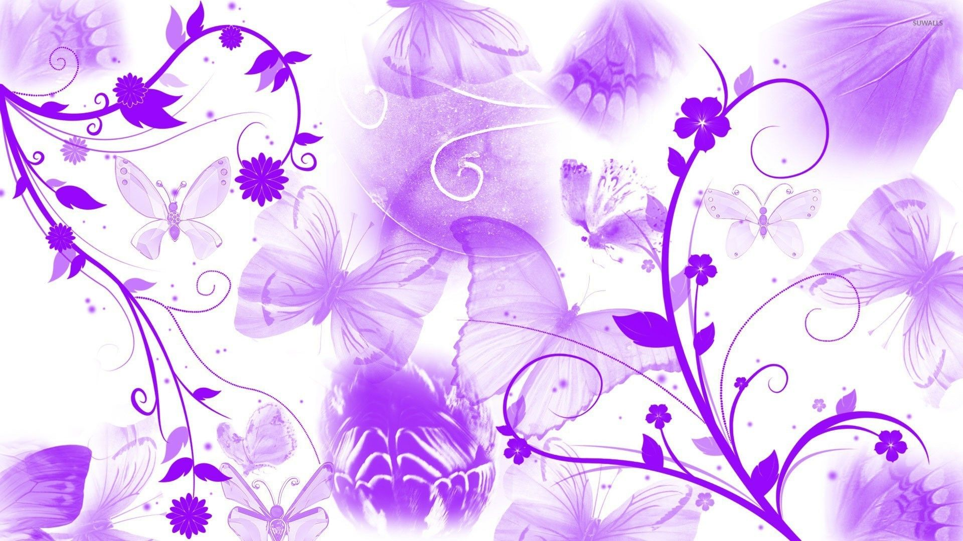Green And Purple Flower , HD Wallpaper & Backgrounds