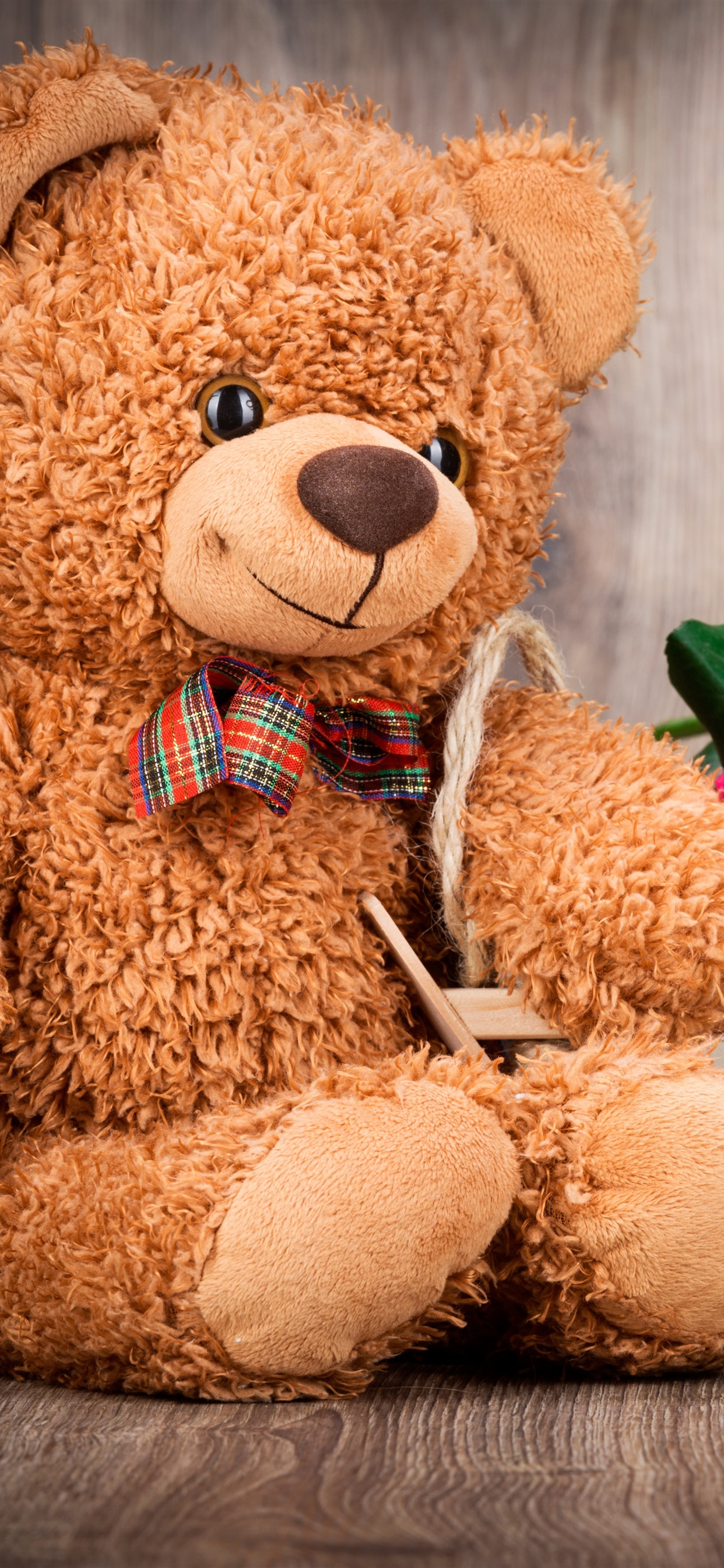 Iphone Wallpaper Teddy Bear And Colorful Roses, Romantic - Thank You Friendship Teddy Bear , HD Wallpaper & Backgrounds