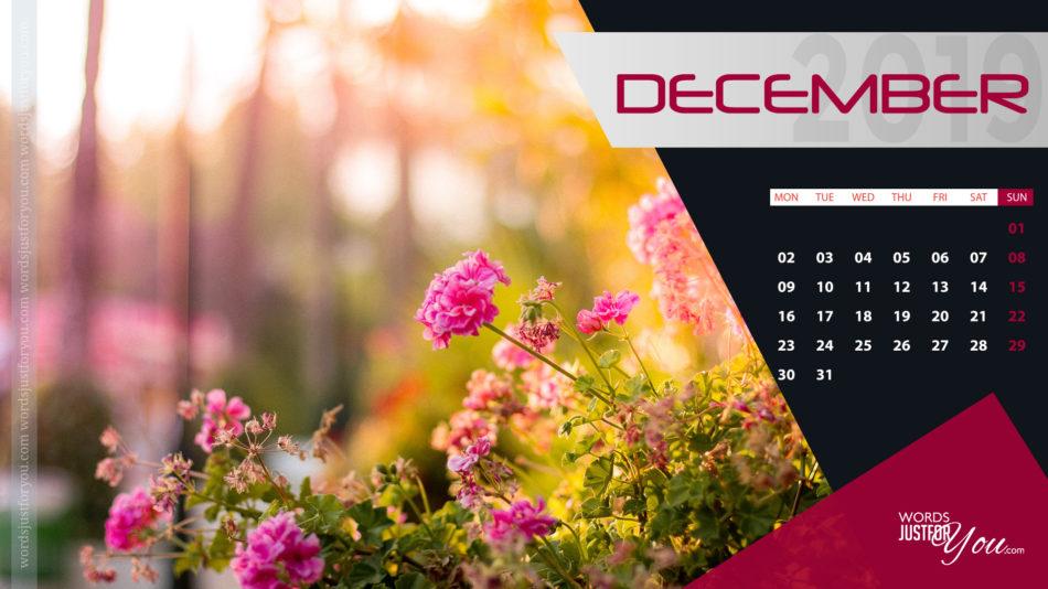 Hd December 2019 Calendar Desktop Wallpaper - December Calendar Desktop Wallpaper 2019 , HD Wallpaper & Backgrounds