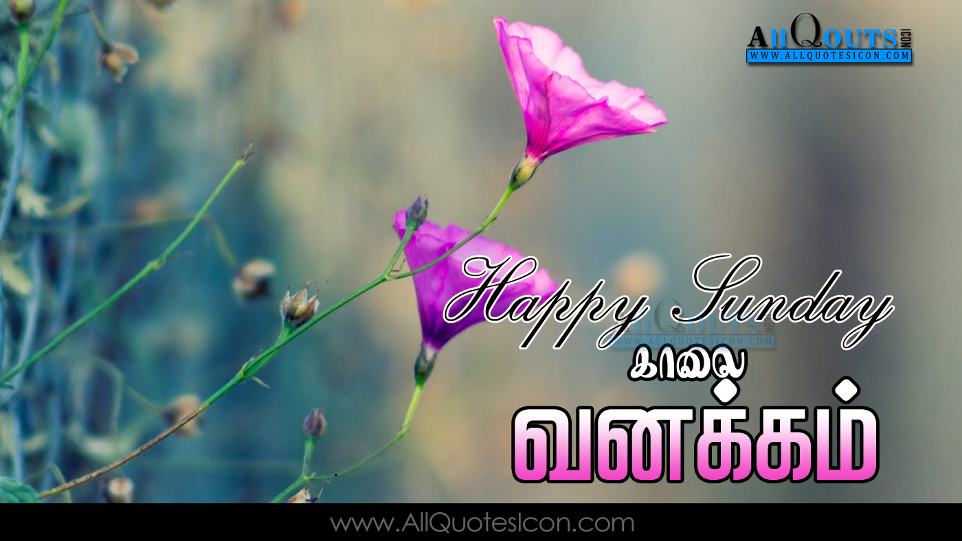 Tamil Good Morning Quotes Wshes For Whatsapp Life Facebook - Good Morning Images In Tamil For Whatsapp , HD Wallpaper & Backgrounds