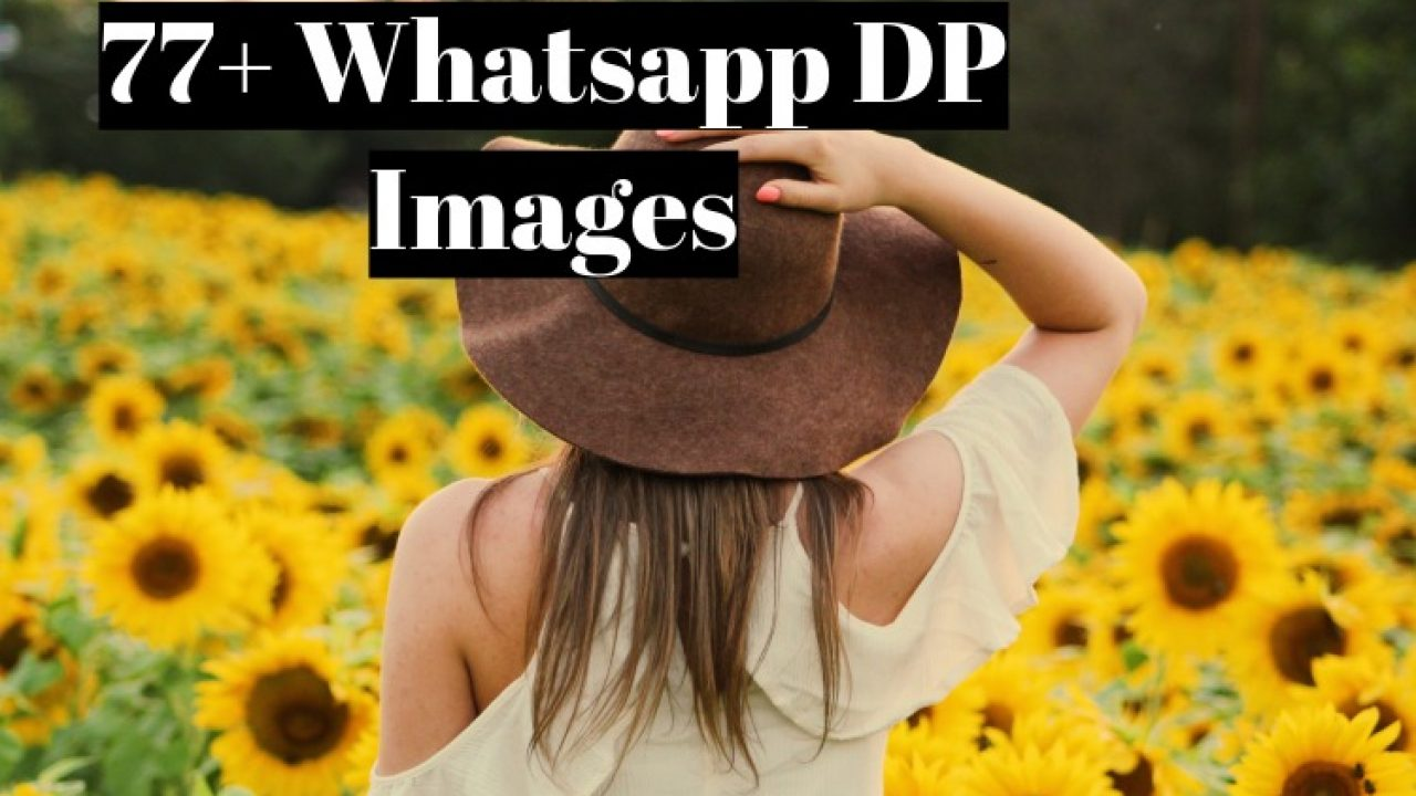 Profile Pic For Whatsapp Dp , HD Wallpaper & Backgrounds