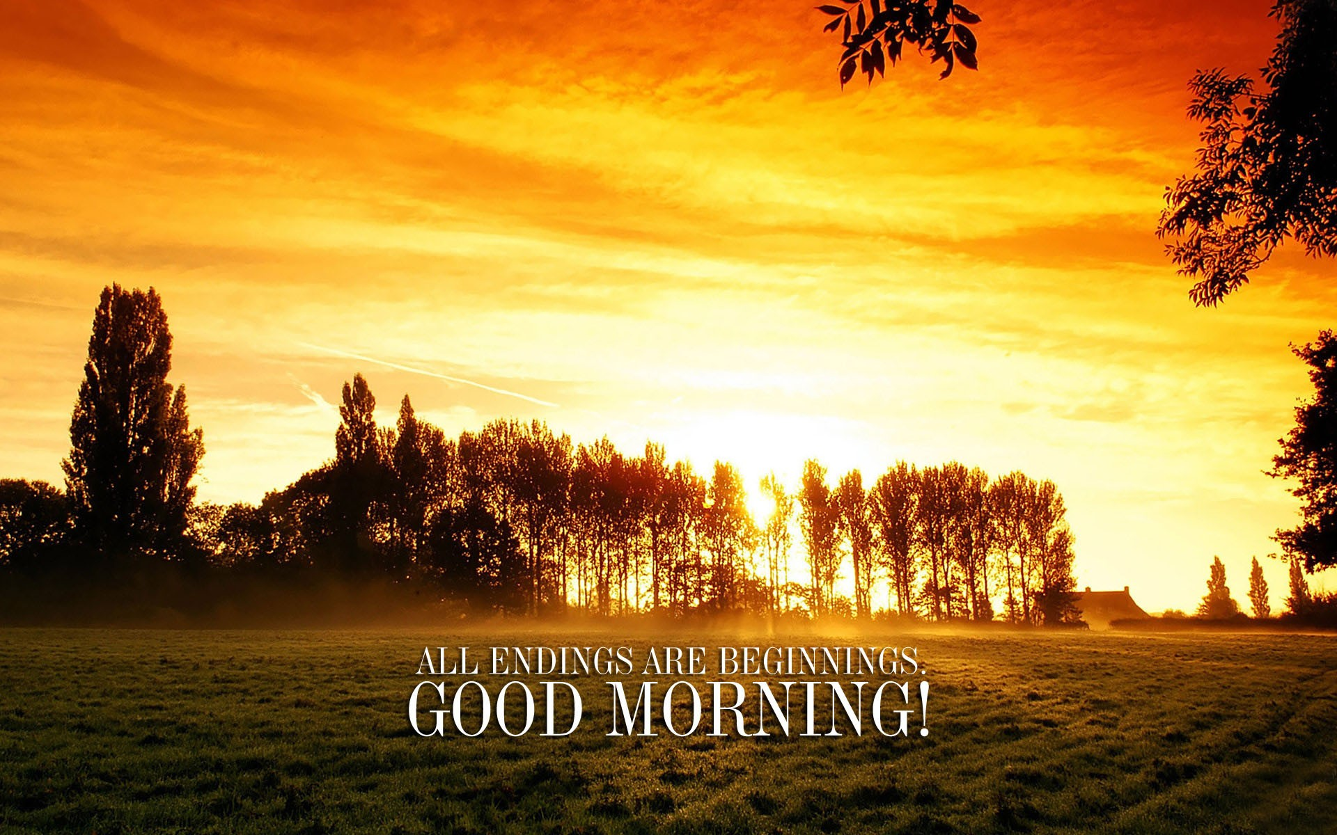 Morning Wishes - Year Ending Good Morning Quotes , HD Wallpaper & Backgrounds
