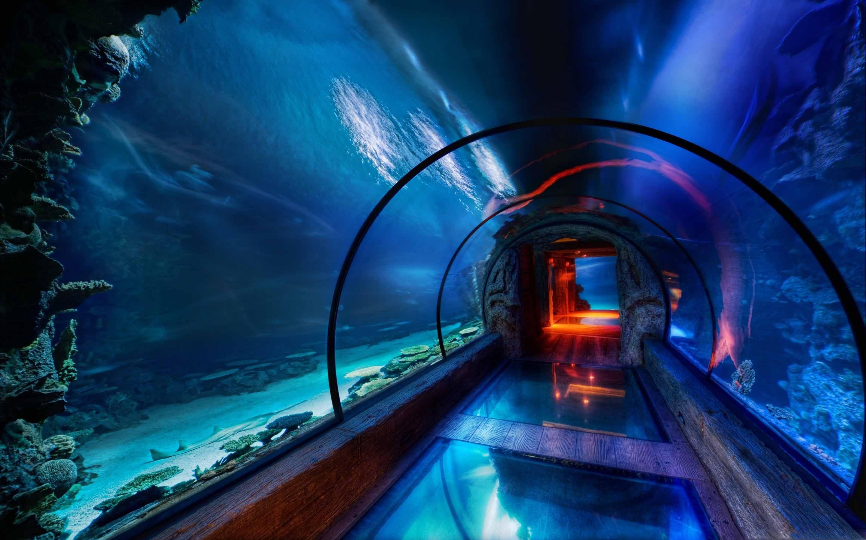 Underwater Passage Las Vegas Mac Wallpaper   Data-src - Last Vegas Beautiful Place , HD Wallpaper & Backgrounds