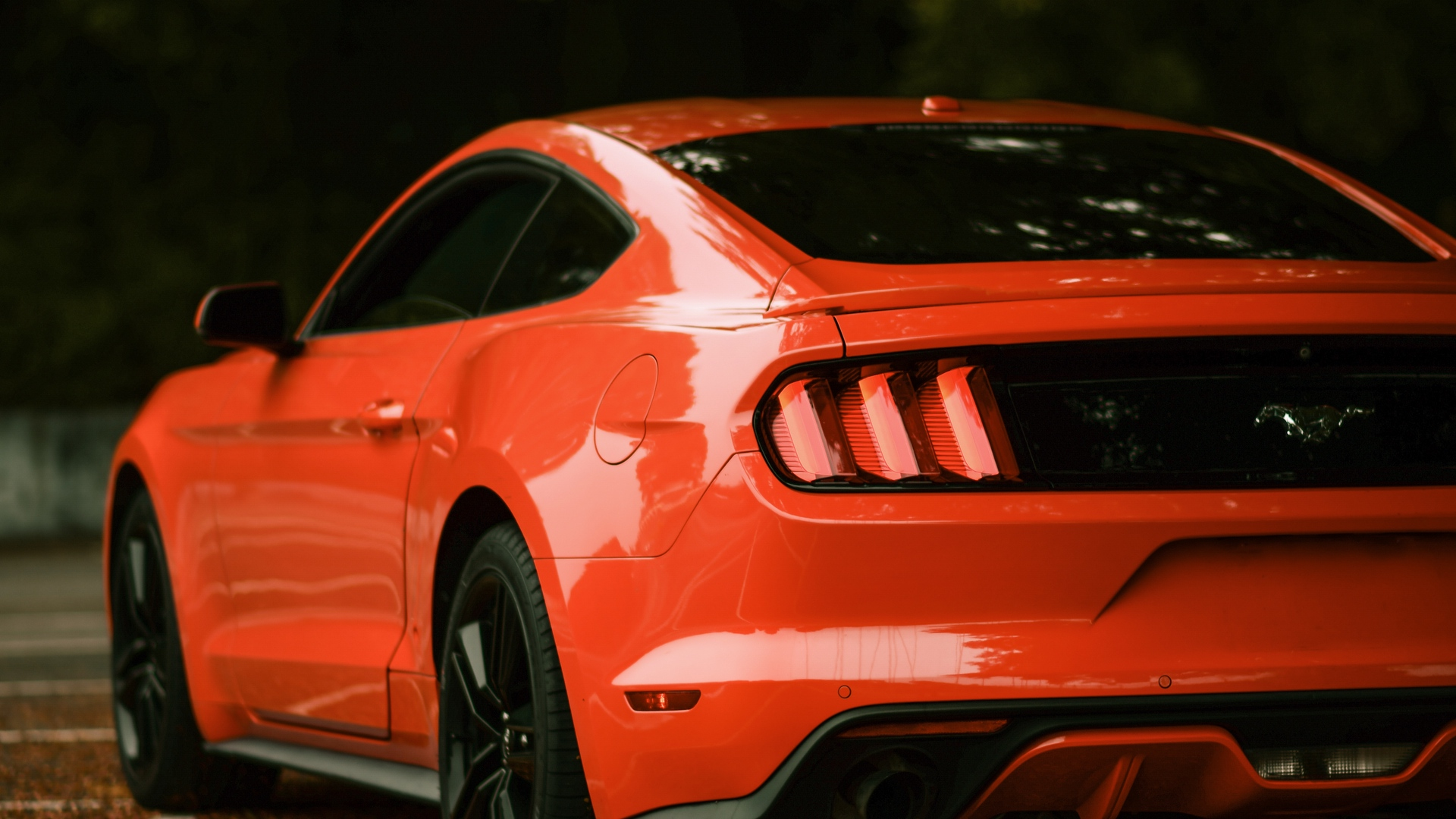 Wallpaper Ford Mustang Ford Car Red Side View Mustang Ford Wallpapers Full Hd 2486234 Hd Wallpaper Backgrounds Download