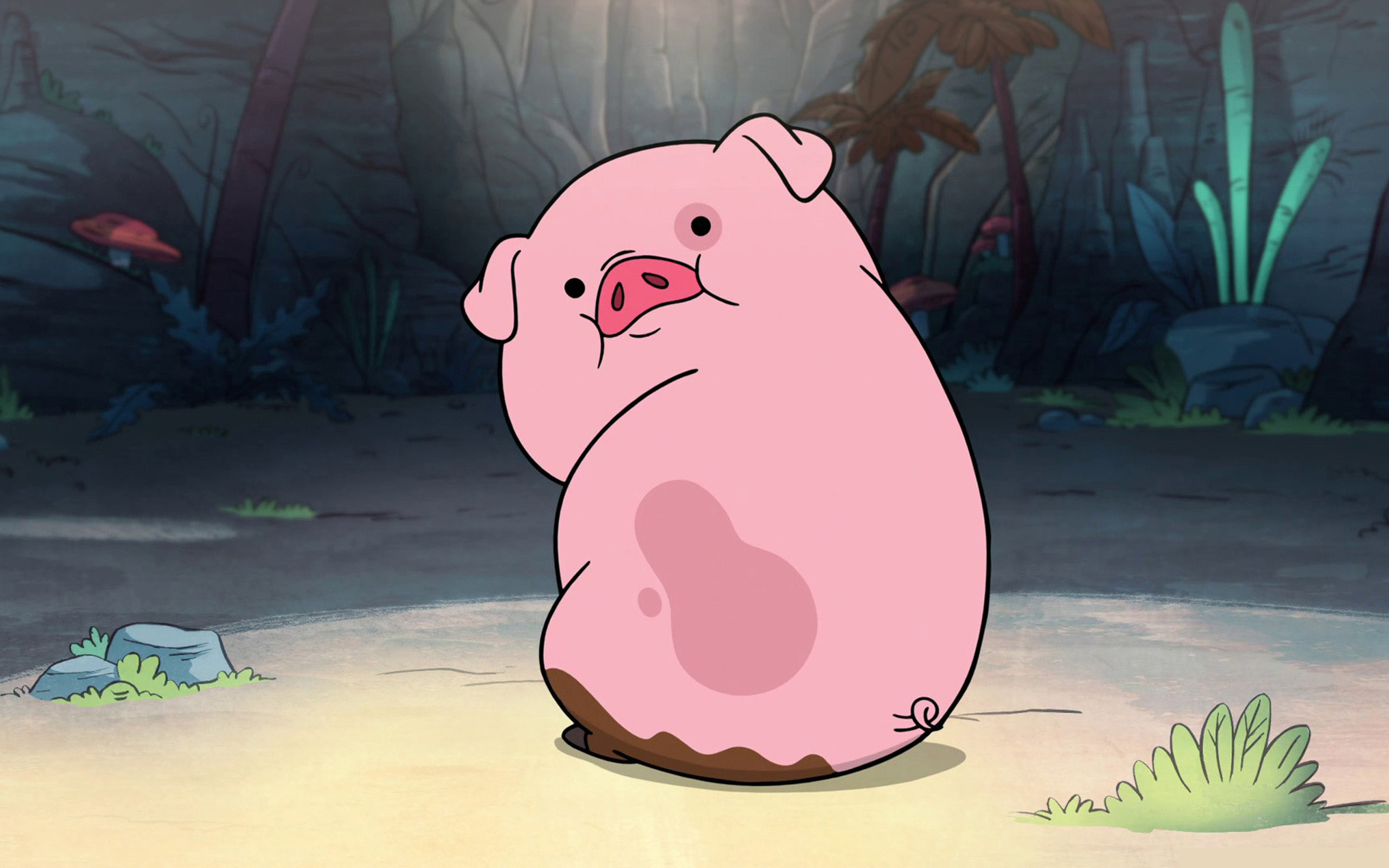 Funny Pig Wallpapers Hd Free Download Download Wallpaper