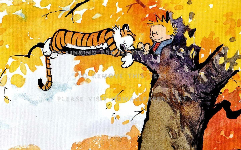 Calvin Hobbes Funny Entertainment Cartoon Calvin And Hobbes
