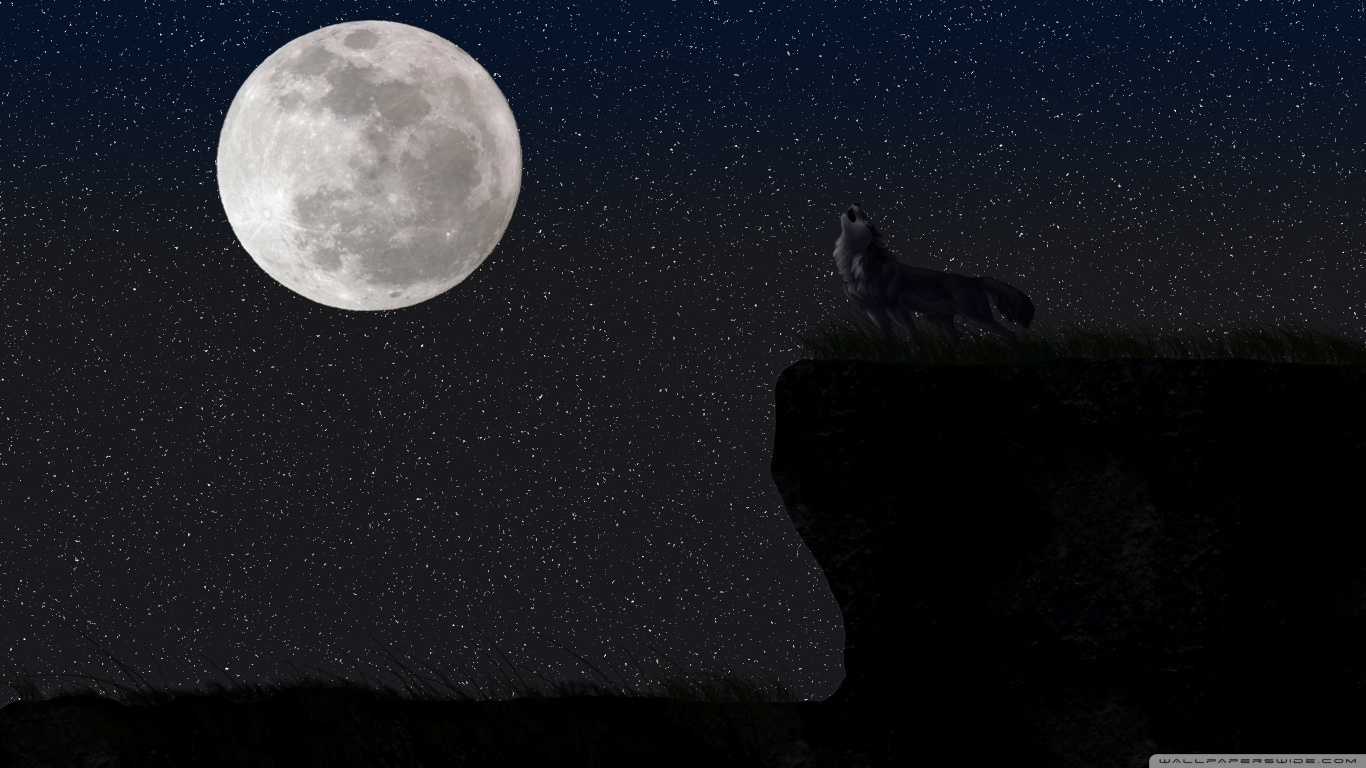 Full Moon Wallpaper Wolf 2518529 Hd Wallpaper Backgrounds