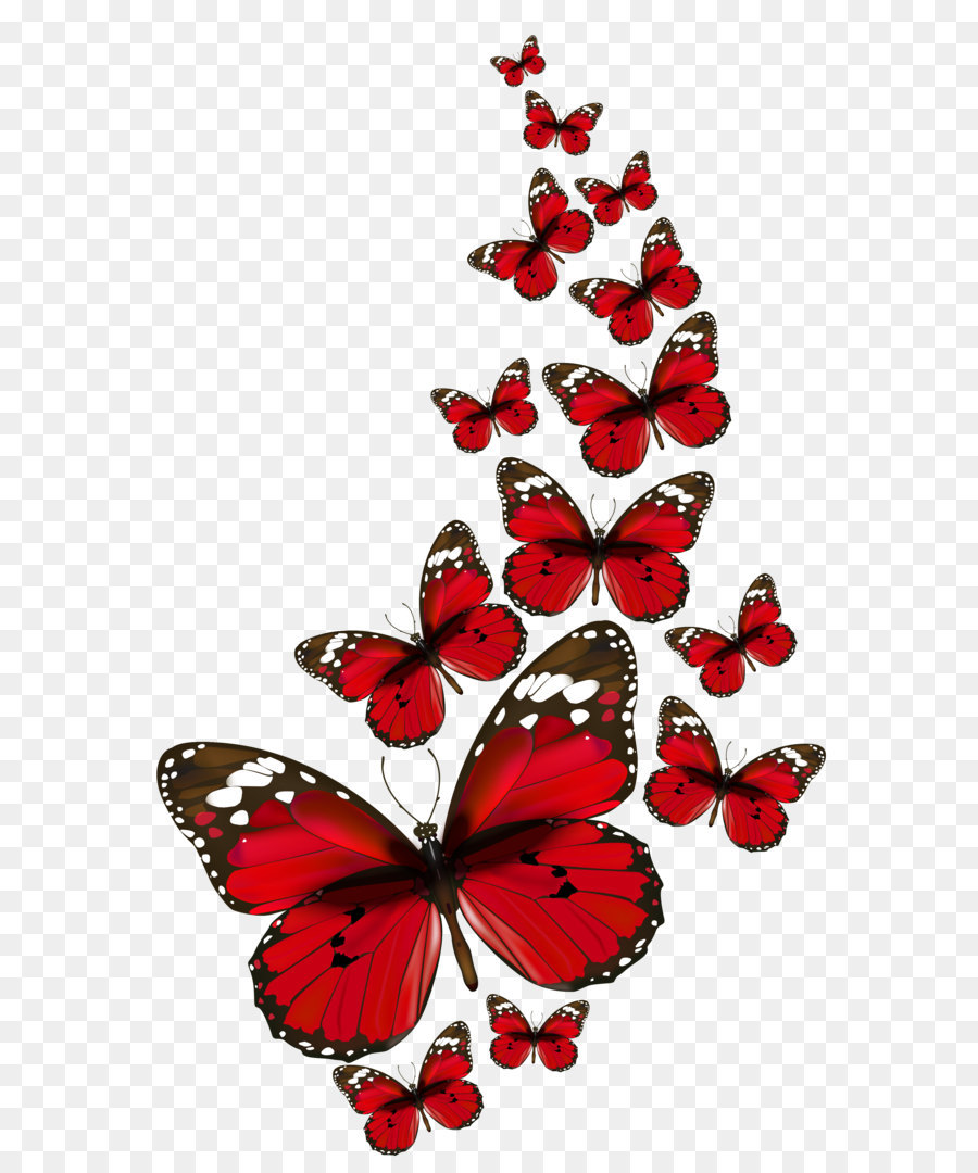 Butterfly Clip Art - Red Butterfly Transparent Background , HD Wallpaper & Backgrounds