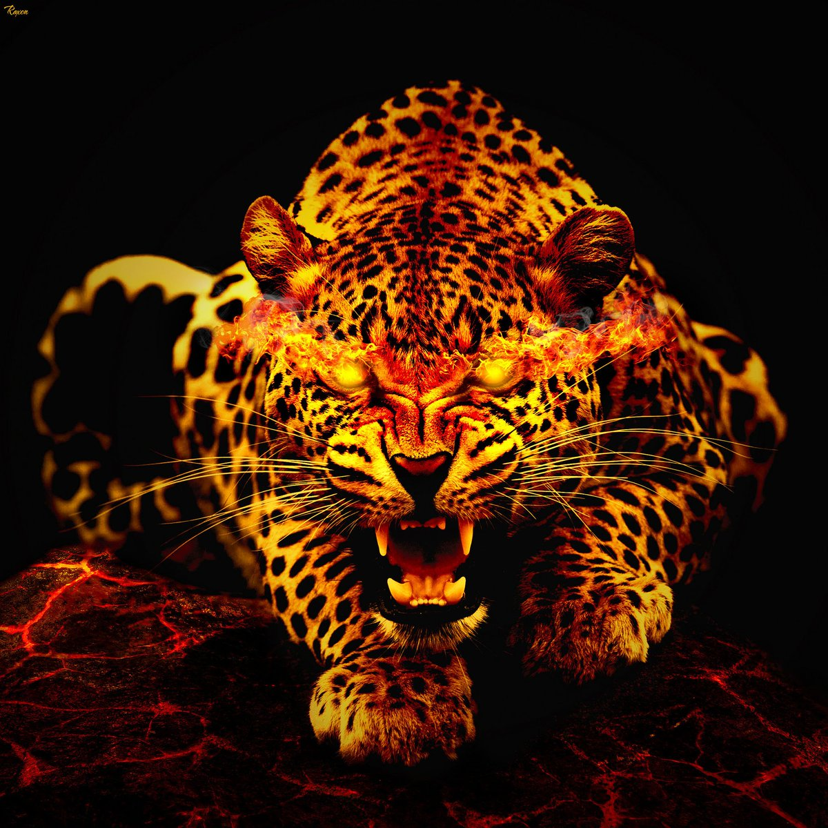Jaguar Amoled 2570663 Hd Wallpaper Backgrounds Download