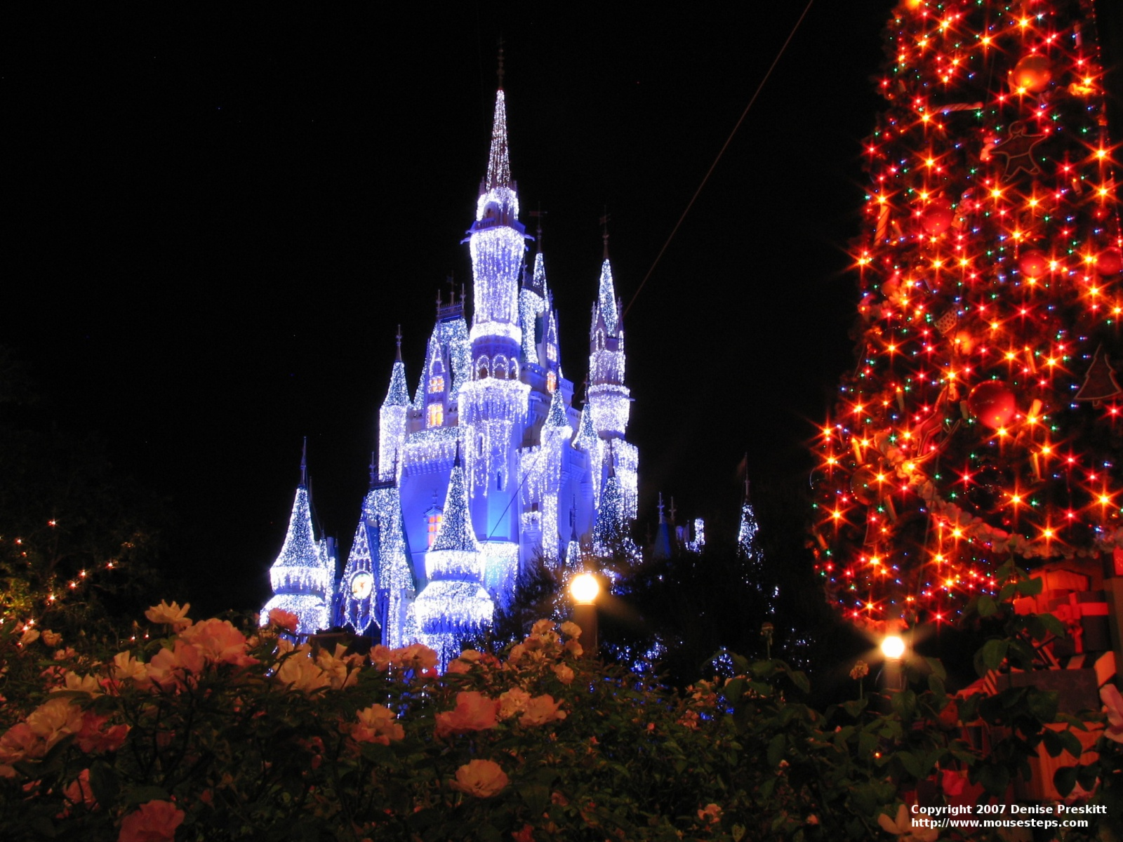 257 2579224 disney christmas wallpaper