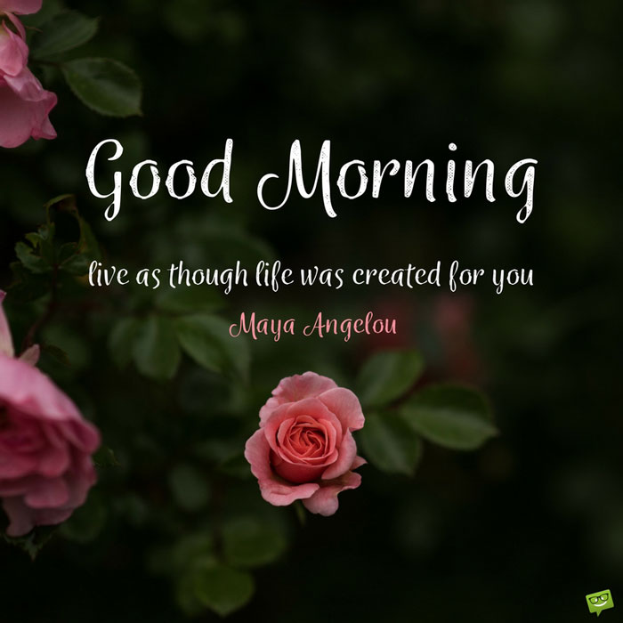 Live As Though Life Was Created For You - Good Morning Good Though , HD Wallpaper & Backgrounds